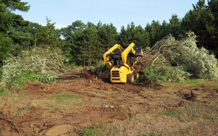 Lot Clearing